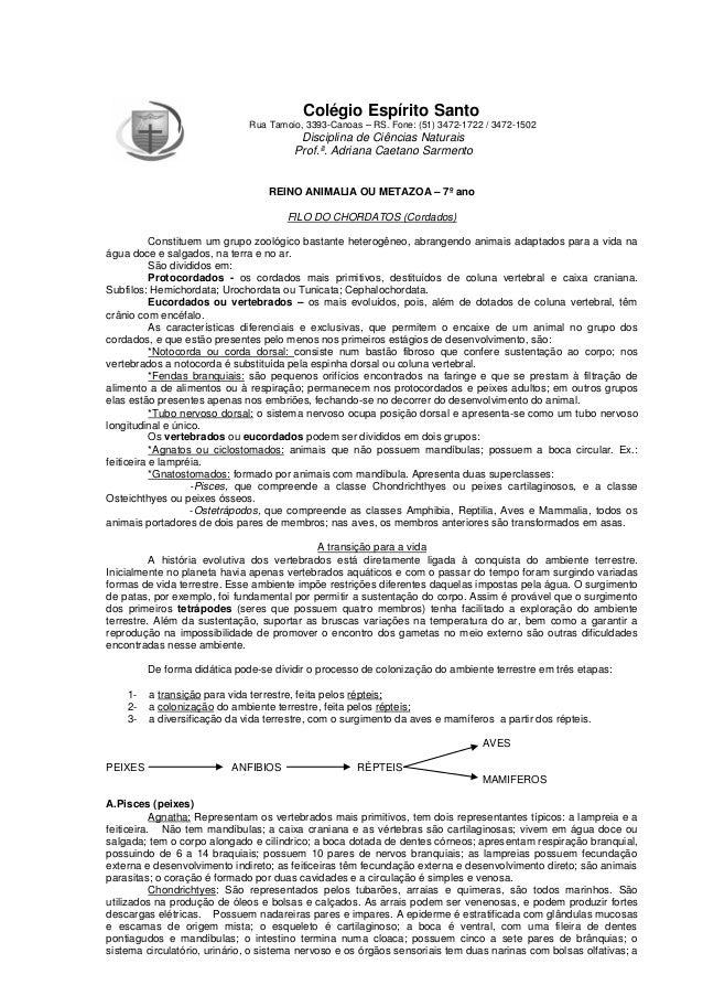Colégio Espírito Santo Rua Tamoio, 3393-Canoas – RS. Fone: (51) 3472-1722 / 3472-1502 Disciplina de Ciências Naturais Prof...
