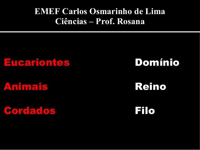 Eucariontes Domínio Animais Reino Cordados Filo EMEF Carlos Osmarinho de Lima Ciências – Prof. Rosana