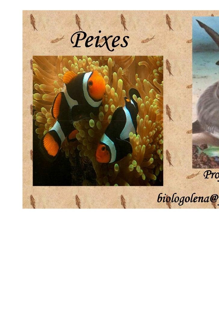 Peixes                  Professora:Lena         biologolena@yahoo.com.br
