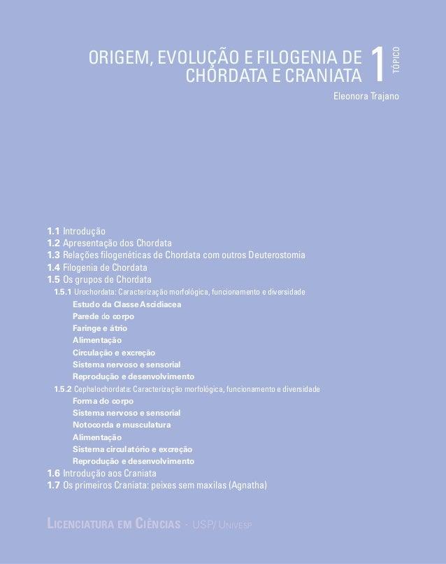 TÓPICO Eleonora Trajano Origem, evolução e filogenia de Chordata e Craniata 1 Licenciatura em Ciências · USP/Univesp 1.1 ...
