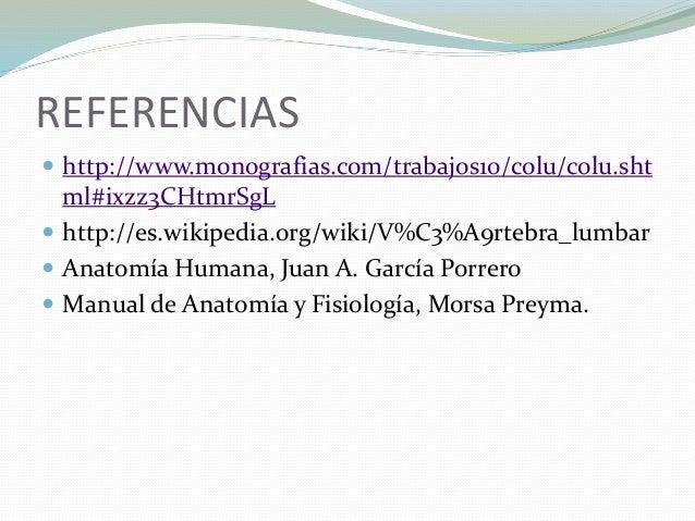Contemporáneo Anatomía De Una Morsa Colección de Imágenes - Anatomía ...