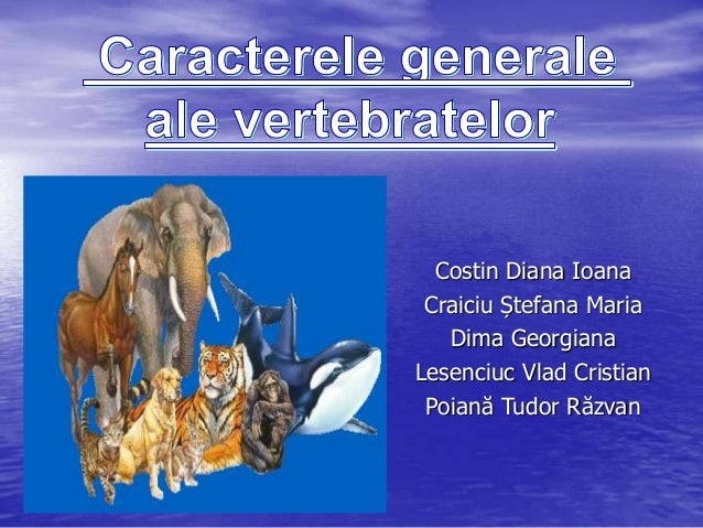 Costin Diana IoanaCraiciu Ștefana MariaDima GeorgianaLesenciuc Vlad CristianPoiană Tudor Răzvan