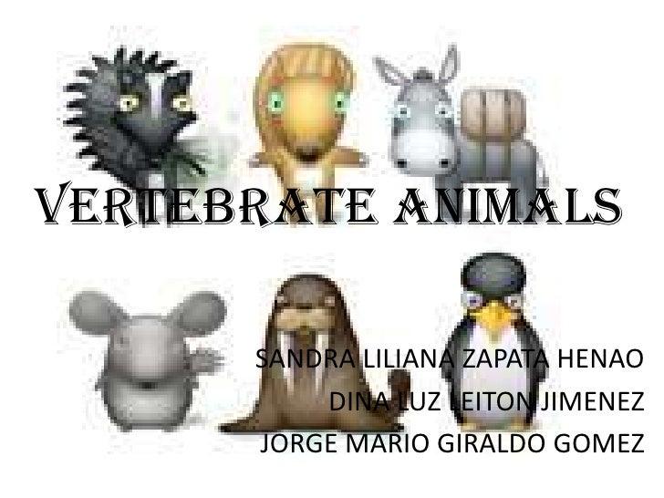 Vertebrate ANIMALS<br />SANDRA LILIANA ZAPATA HENAO<br />DINA LUZ LEITON JIMENEZ<br />JORGE MARIO GIRALDO GOMEZ<br />