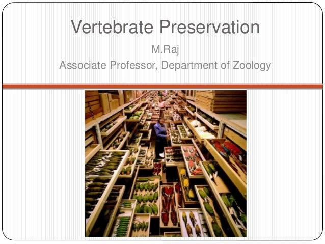 Vertebrate Preservation M.Raj Associate Professor, Department of Zoology