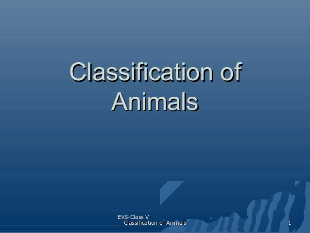 Classification of Animals  EVS-Class V Classification of Animals  1