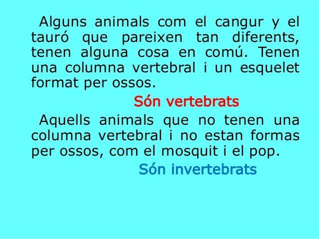 Alguns animals com el cangur y el tauró que pareixen tan diferents, tenen alguna cosa en comú. Tenen una columna vertebral...