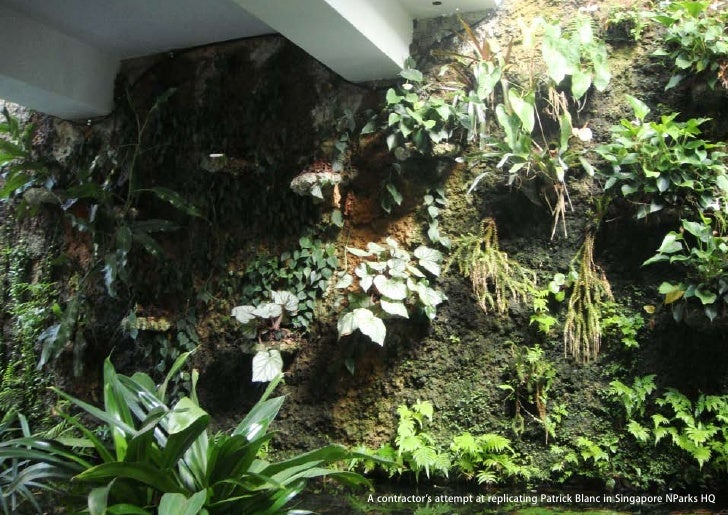 vertical greening systems   stephanie gautama   A contractor's attempt at replicating Patrick Blanc in Singapore NParks HQ