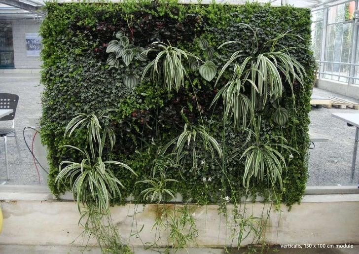 vertical greening systems   stephanie gautama   Verticalis, 150 x 100 cm module