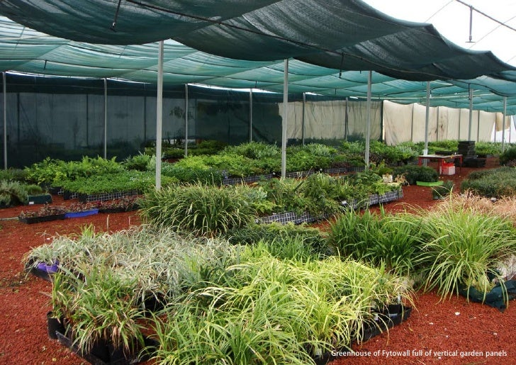 vertical greening systems   stephanie gautama   Greenhouse of Fytowall full of vertical garden panels