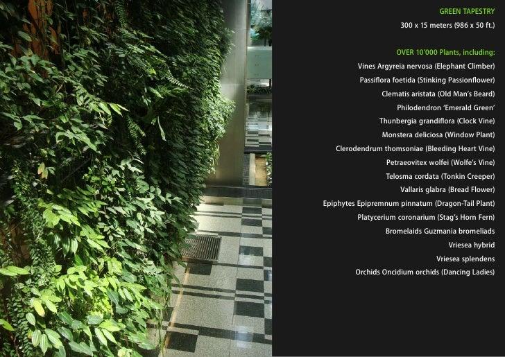GREEN TAPESTRY                                                                       300 x 15 meters (986 x 50 ft.)       ...