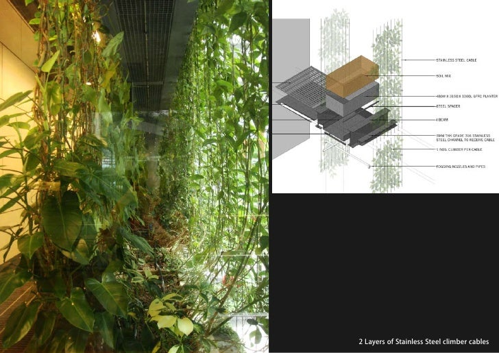 vertical greening systems   stephanie gautama   2 Layers of Stainless Steel climber cables