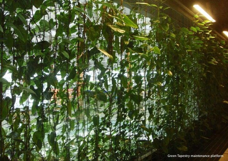 vertical greening systems   stephanie gautama   Green Tapestry maintenance platform