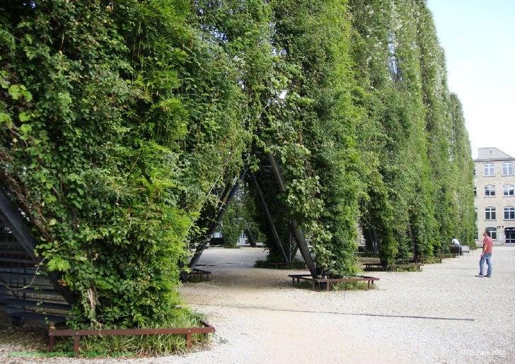 vertical greening systems   stephanie gautama   MFO Park 2009