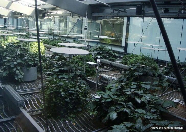 vertical greening systems   stephanie gautama   Above the hanging garden