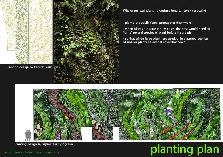 Why green wall planting designs tend to streak vertically?                                                      - plants, ...