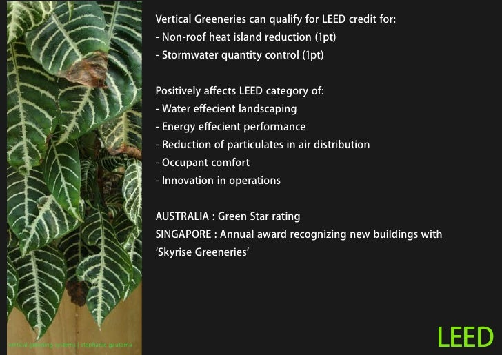 Vertical Greeneries can qualify for LEED credit for:                                                 - Non-roof heat islan...
