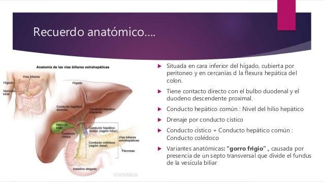 Radiología de VIAS BILIARES