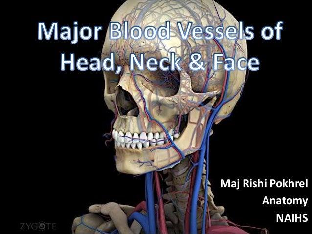 Maj Rishi Pokhrel Anatomy NAIHS