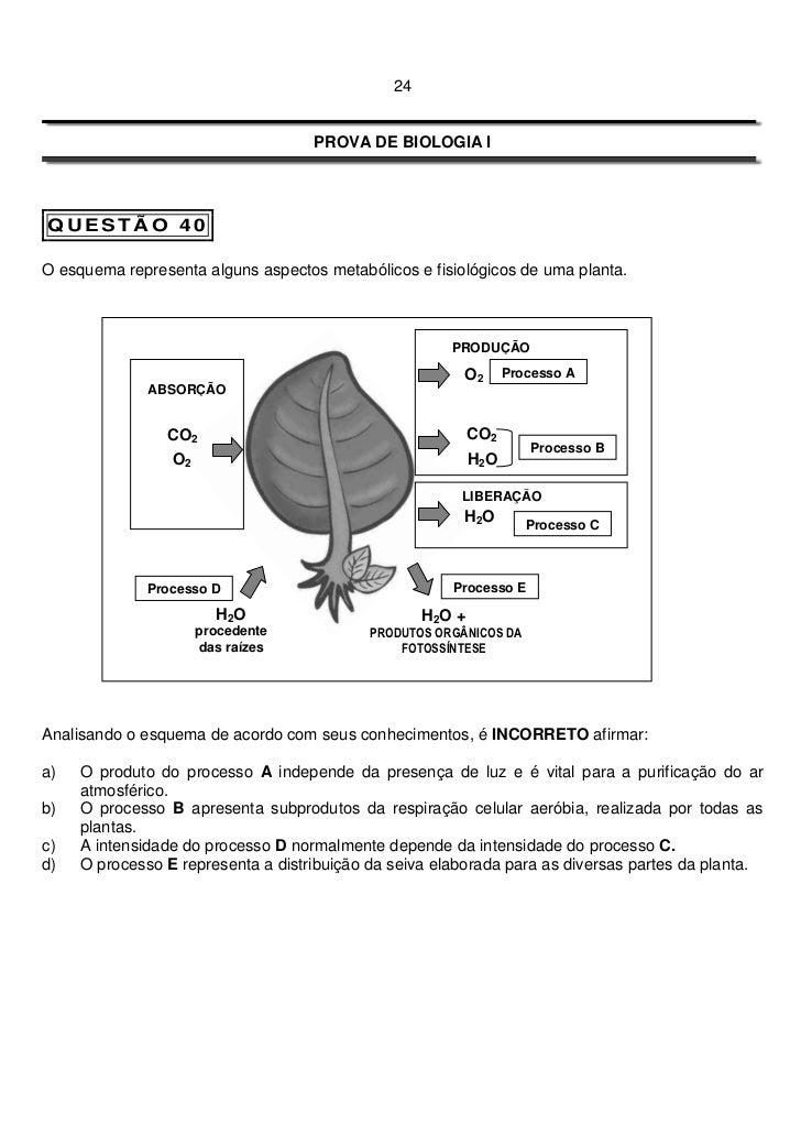24                                    PROVA DE BIOLOGIA IQUESTÃO 40O esquema representa alguns aspectos metabólicos e fisi...