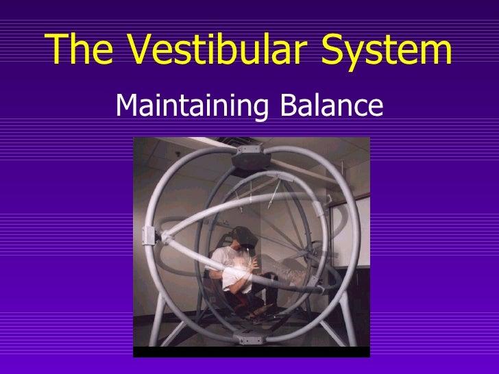 The Vestibular System   Maintaining Balance