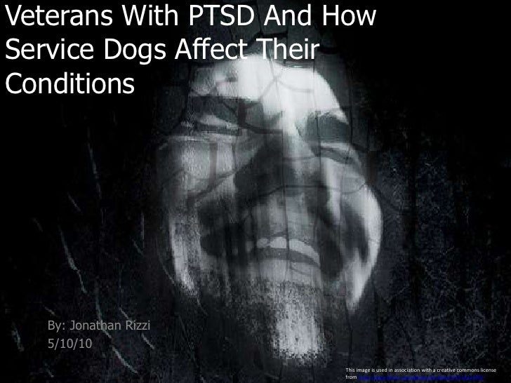 Veterans With PTSD And How Service Dogs Affect Their Conditions <br />By: Jonathan Rizzi<br />5/10/10 <br />This image is ...