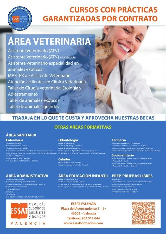 Auxiliar y técnico en Veterinaria en Valencia. Essat Formación.