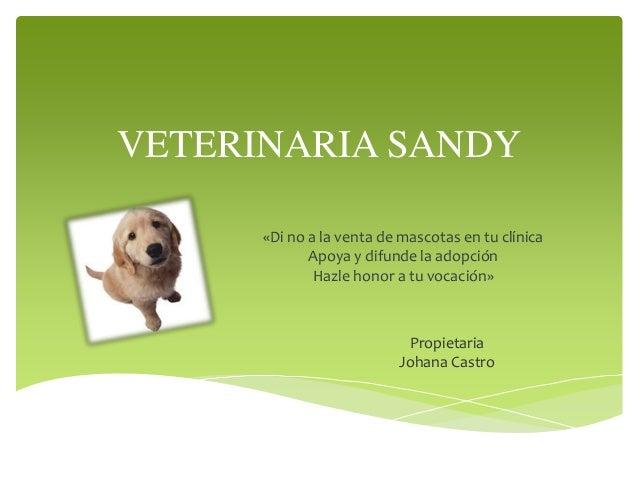 VETERINARIA SANDY «Di no a la venta de mascotas en tu clínica Apoya y difunde la adopción Hazle honor a tu vocación» Propi...