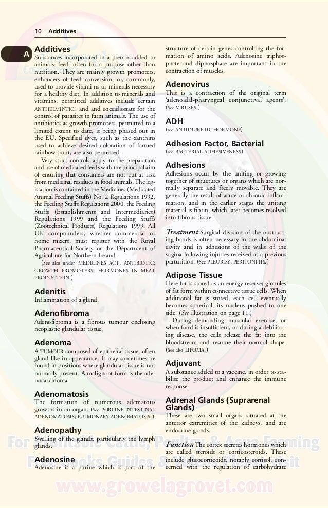 BLACK'S VETERINARY DICTIONARY (World's Biggest Veterinary Dictionary)