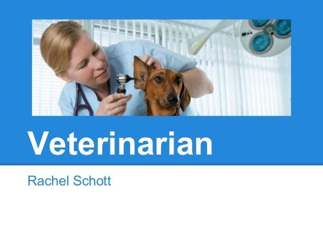 VeterinarianRachel Schott