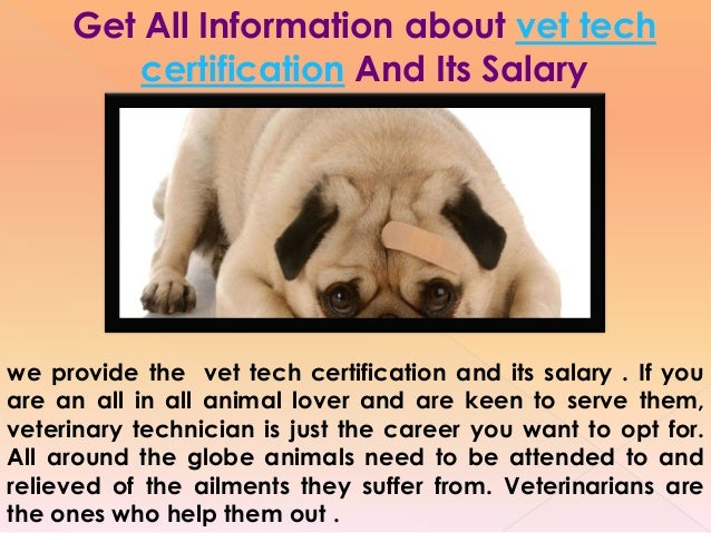 Veterinary tech salary