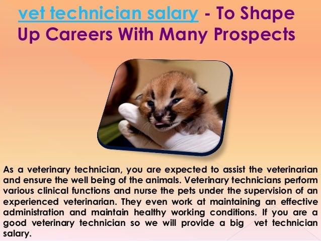 veterinarian technician salary
