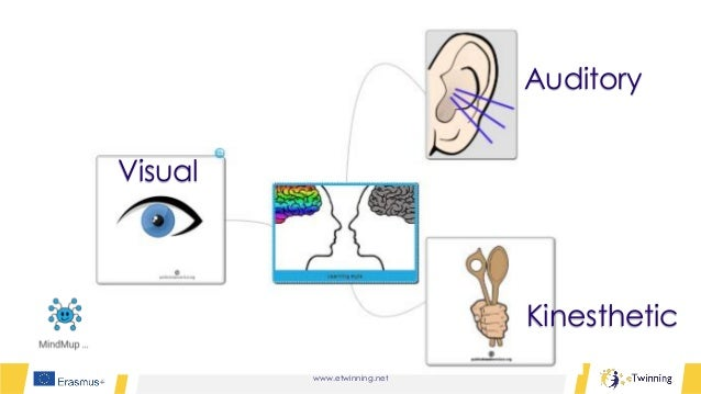 www.etwinning.net Kinesthetic Auditory Visual