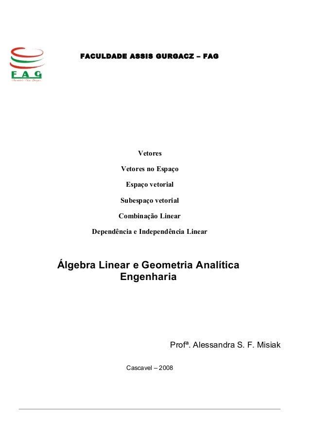 FACULDADE ASSIS GURGACZ – FAG Vetores Vetores no Espaço Espaço vetorial Subespaço vetorial Combinação Linear Dependência e...