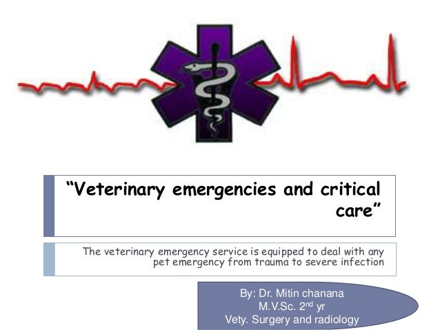 """Veterinary emergencies and critical care"" The veterinary emergency service is equipped to deal with any pet emergency fro..."