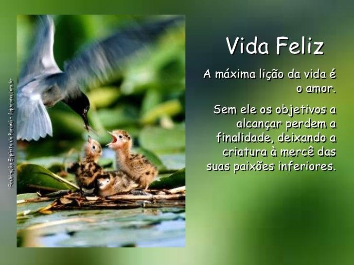 Vida Feliz                                                 A máxima lição da vida éFederação Espírita do Paraná – feparana...