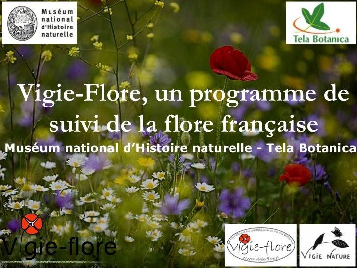 Vigie-Flore, un programme de   suivi de la flore françaiseMuséum national d'Histoire naturelle - Tela Botanica