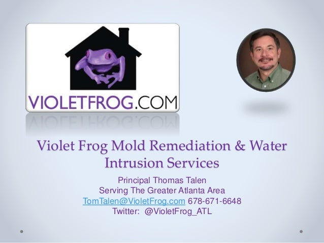 Violet Frog Mold Remediation & Water Intrusion Services Principal Thomas Talen Serving The Greater Atlanta Area TomTalen@V...