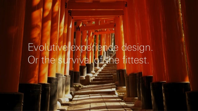 Evolutive experience design. Or the survival of the fittest.