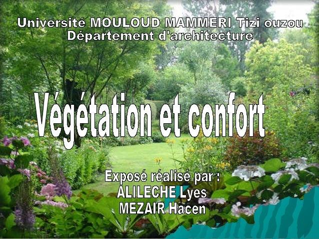 PLAN DE TRAVAIL 1 Introduction 2 Définitions: - Végétation - Confort 3 Type de végétation 4 Effets de la végétation sur le...