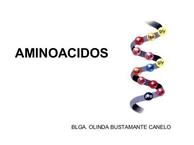 AMINOACIDOS BLGA. OLINDA BUSTAMANTE CANELO