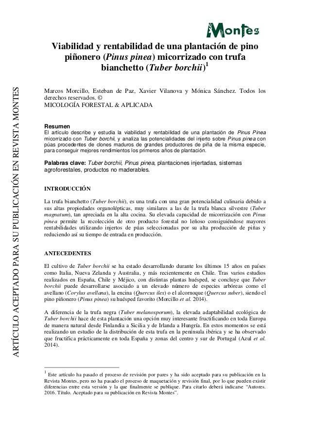 ARTÍCULOACEPTADOPARASUPUBLICACIÓNENREVISTAMONTES Viabilidad y rentabilidad de una plantación de pino piñonero (Pinus pinea...