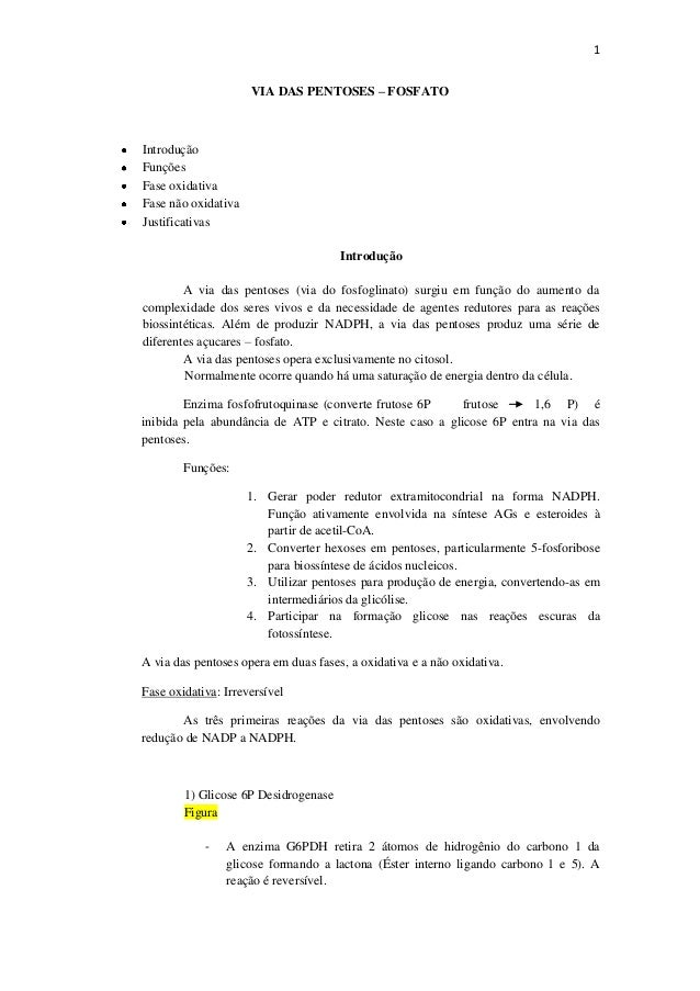 1                     VIA DAS PENTOSES – FOSFATOIntroduçãoFunçõesFase oxidativaFase não oxidativaJustificativas           ...