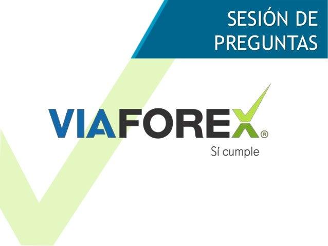Auditoria y forex