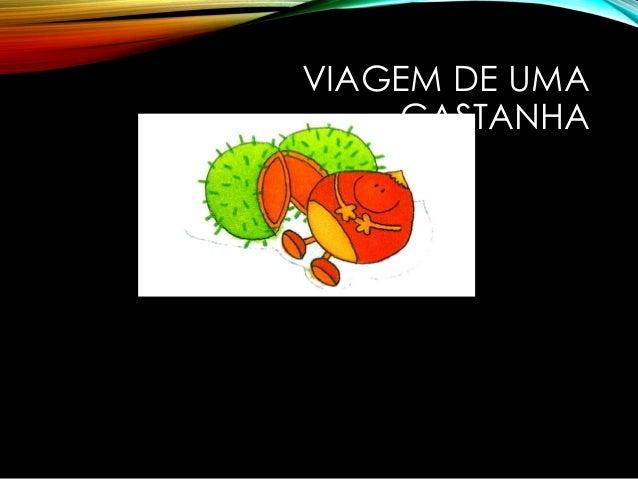 VIAGEM DE UMA CASTANHA