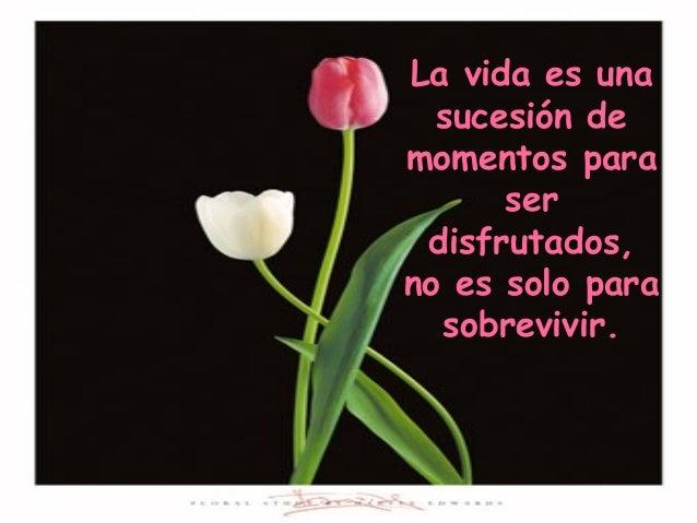 La vida es una sucesión de momentos para ser disfrutados, no es solo para sobrevivir.