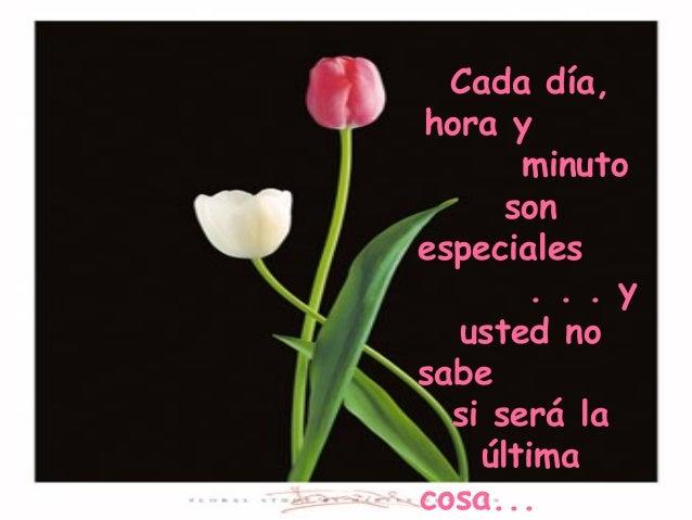 Cada día, hora y minuto son especiales . . . y usted no sabe si será la última cosa...