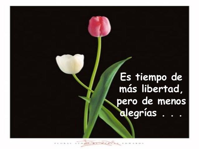 Es tiempo de más libertad, pero de menos alegrías . . .