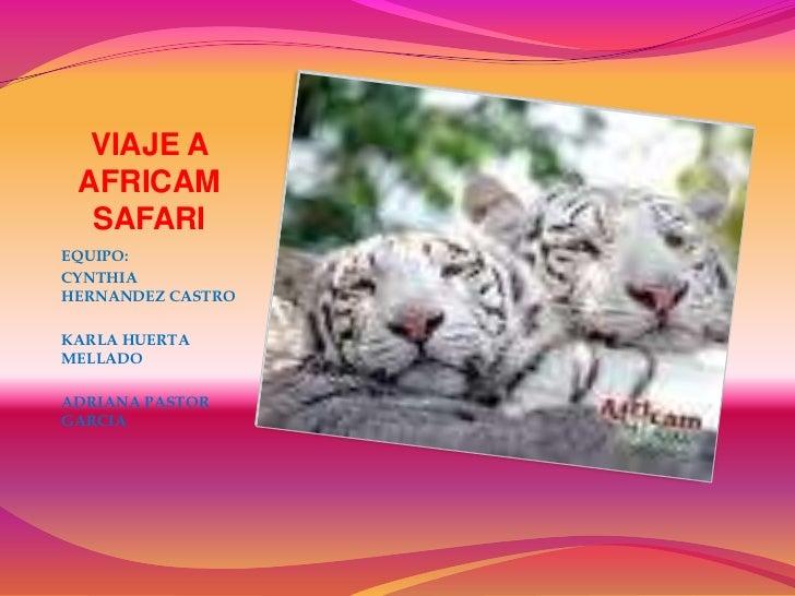 VIAJE A AFRICAM SAFARI<br />EQUIPO: <br />CYNTHIA HERNANDEZ CASTRO<br />KARLA HUERTA MELLADO<br />ADRIANA PASTOR GARCIA<br />