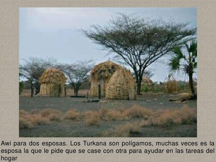 Awi para dos esposas. Los Turkana son polígamos, muchas veces es laesposa la que le pide que se case con otra para ayudar ...