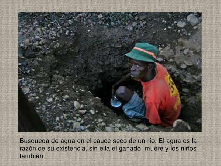 Búsqueda de agua en el cauce seco de un río. El agua es larazón de su existencia, sin ella el ganado muere y los niñostamb...